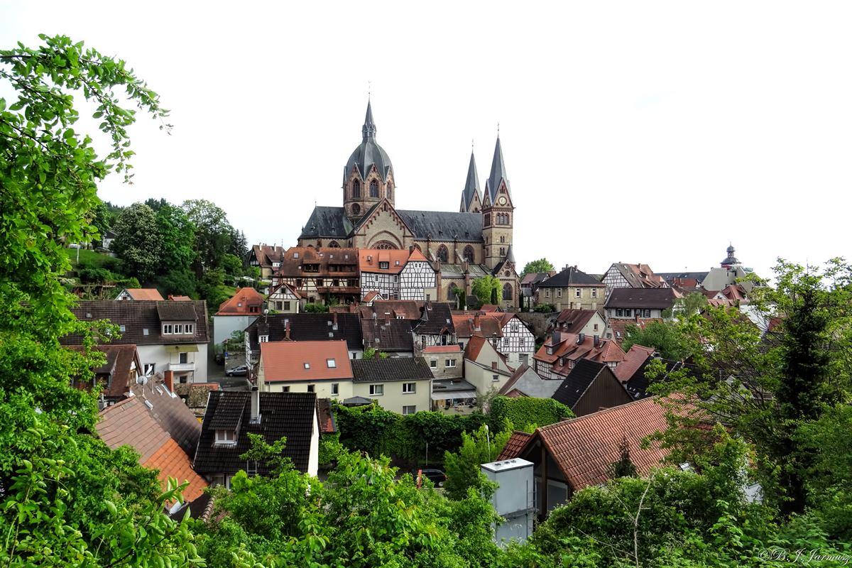 Sicht auf die Altstadt, vom Mühlgraben.